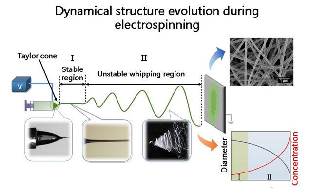 静电纺丝工艺产生纤维管的动态过程.png