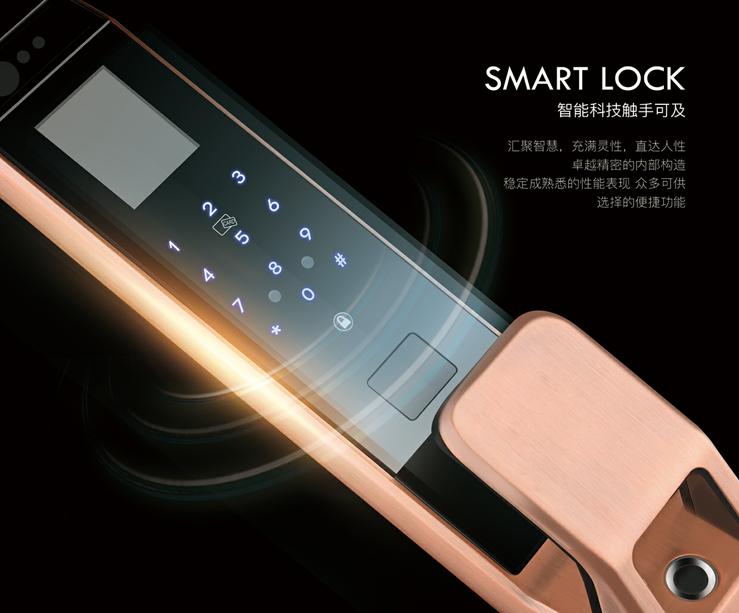 梵歌fg-055人脸识别智能锁高端指纹密码锁七合一家用商用.png