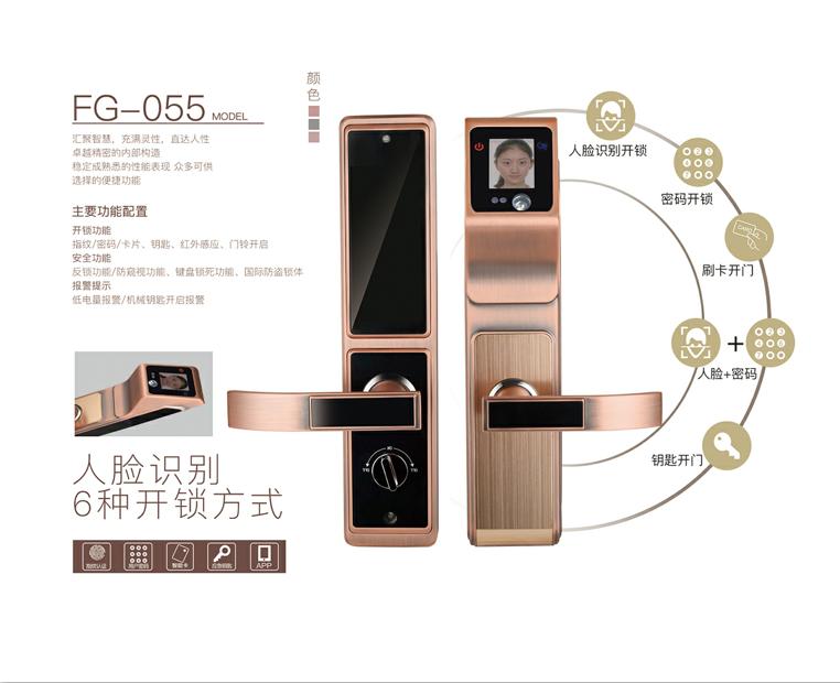 梵歌fg-055人脸识别智能锁家用防盗木门锁大门锁.png